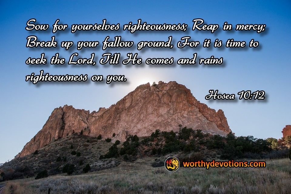 sow-righteousness-reap-mercy-break-follow-ground-worthy-devotions