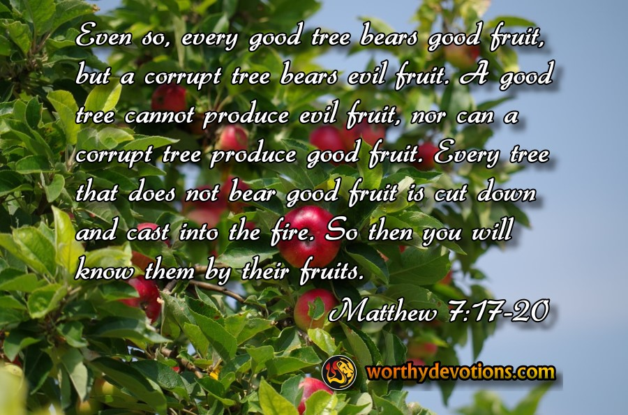 Even so, every good tree bears good fruit, but a corrupt tree bears evil fruit. A good tree cannot produce evil fruit, nor can a corrupt tree produce good fruit. Every tree that does not bear good fruit is cut down and cast into the fire. So then you will know them by their fruits.