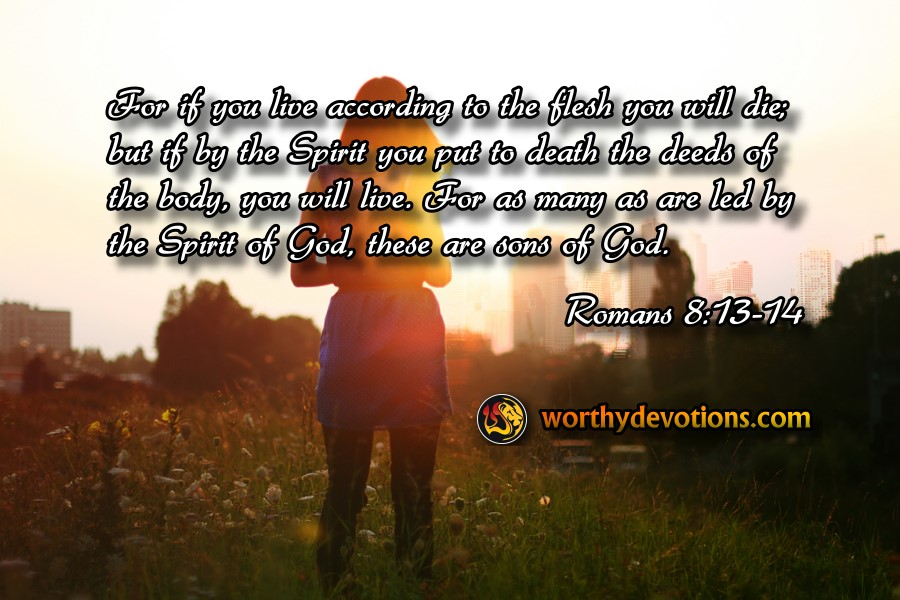 for-live-according-to-the-spirit-romans-8-13-14-worthy-devotions