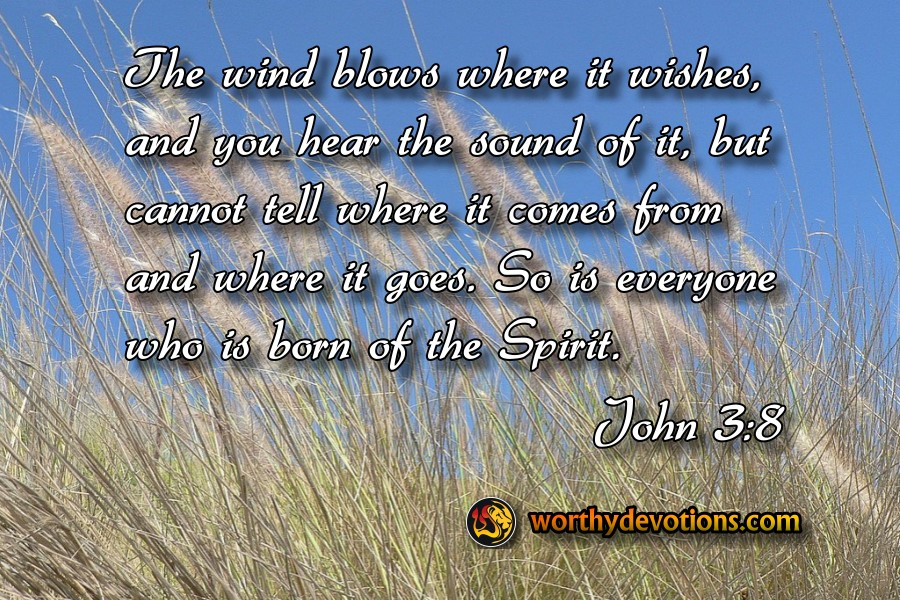 The wind blows where it wishes, and you hear the sound of it, but cannot tell where it comes from and where it goes. So is everyone who is born of the Spirit.